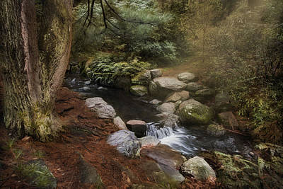 Photograph - By The Brook by Robin-Lee Vieira