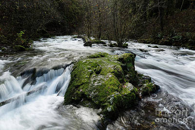 Strong America Photograph - By The Creek by Masako Metz
