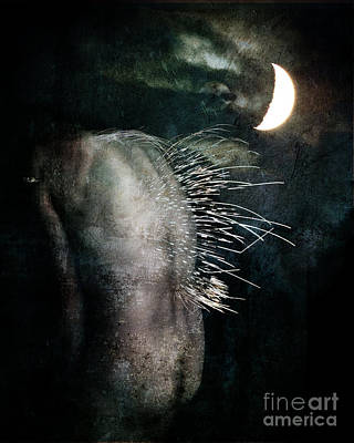 Digital Art - By The Light Of The Moon by Nada Meeks