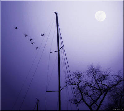 Artistic License Photograph - By The Pale Moon by Brian Wallace