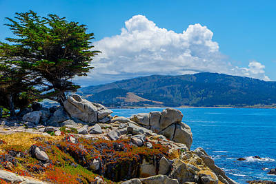 Photograph - By The Sea by Derek Dean