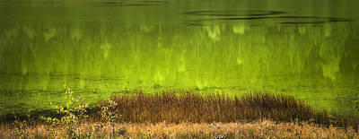 Photograph - By The Still Green Waters by Theresa Tahara