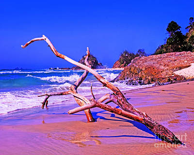 Byron Beach Australia Art Print by Chris Smith