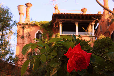 Ca' Dario In Venice With Rose Art Print by Michael Henderson