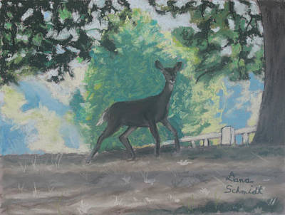 Painting - California Deer At Foothills Near Mountain View by Dana Schmidt