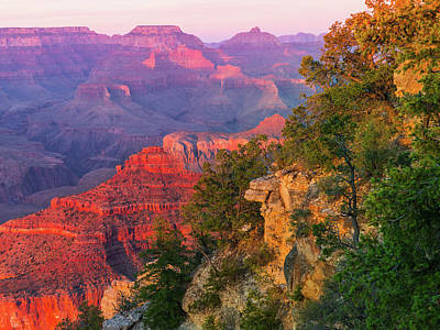 Canyon Allure Print by Mikes Nature