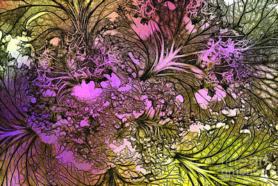Photograph - Cabbage Fantasy by Judi Bagwell