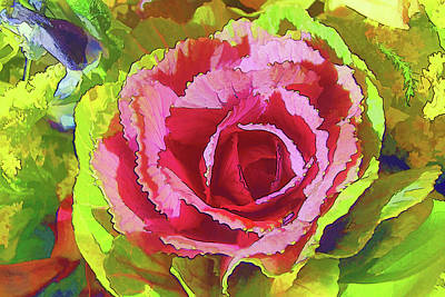 Photograph - Cabbage Rose by Betsy Zimmerli