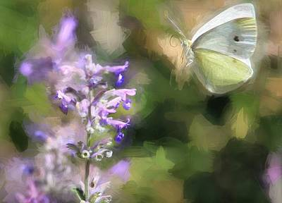 Photograph - Cabbage White - Painterly by Donna Kennedy