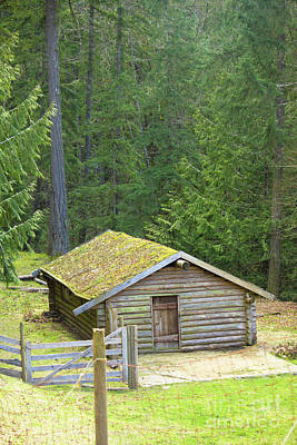 Photograph - Cabin At Coombs by Donna L Munro