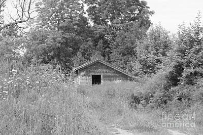 Photograph - Cabin In The Grass by Lennie Malvone