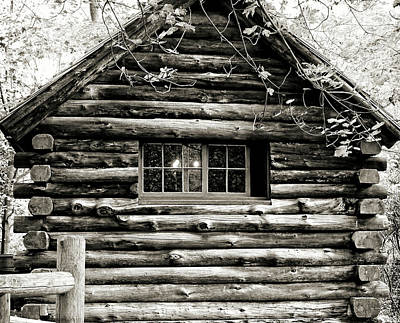 Photograph - Cabin In The Woods by Brenda Conrad