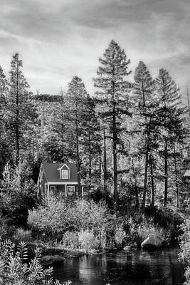 Photograph - Cabin In The Woods Bw by Sennie Pierson
