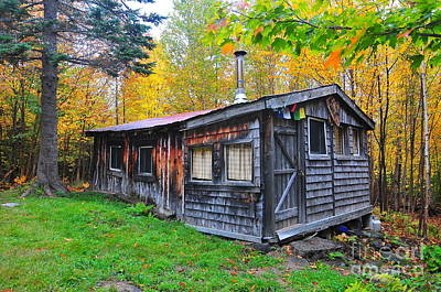 Little Cabin Photograph - Cabin In The Woods  by Catherine Reusch Daley