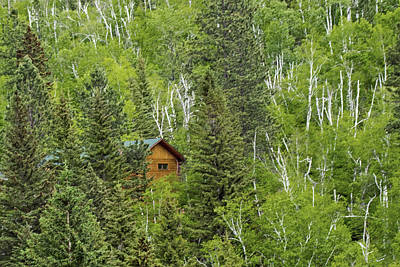 Ira Marcus Royalty-Free and Rights-Managed Images - Cabin in the Woods by Ira Marcus