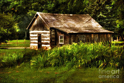 Log Cabins Digital Art - Cabin In The Woods by Lois Bryan