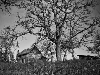 Photograph - Cabin by Sara Stevenson