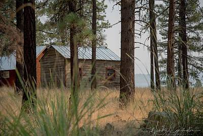 Photograph - Cabin Through The Trees by Wendy Carrington
