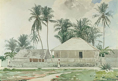 Palm Drawing - Cabins, Nassau by Winslow Homer