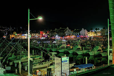 Photograph - Cabo Marina At Night by Deana Glenz