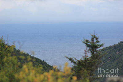 Photograph - Cabot Trail View by Wilko Van de Kamp