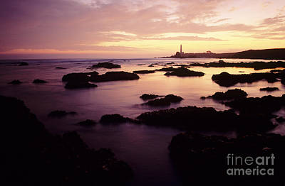 Photograph - Cabrillo Lighthouse by Peter French - Printscapes