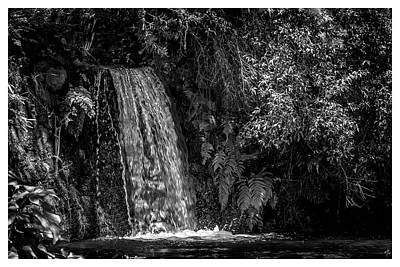 Photograph - Cachoeira-parque Estadual-campos Do Jordao-sp by Carlos Mac