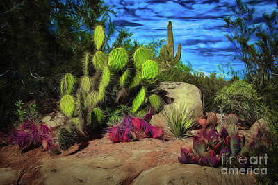 Photograph - Cacti And Rock by Jon Burch Photography