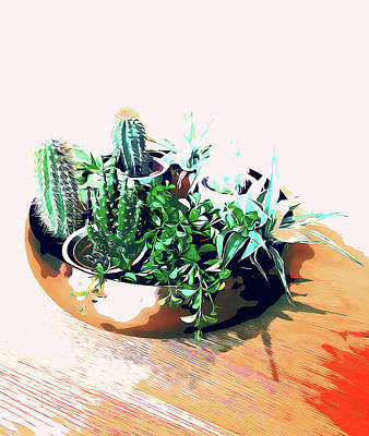 Digital Art - Cacti In A Copper Pot by Uma Gokhale