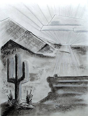 Drawing - Cacti Sunset by J R Seymour