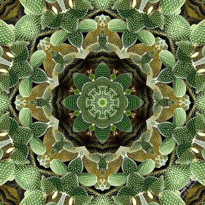 Cactus 1361k8 Art Print