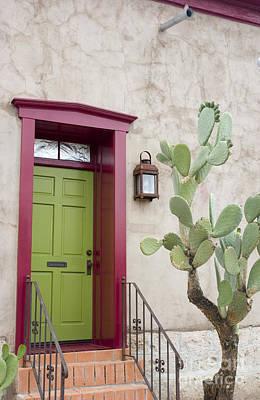 Cactus And Doorway Print by Elvira Butler