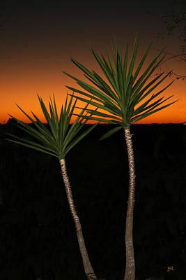 Cactus At Sunset Art Print by Julie Reyes
