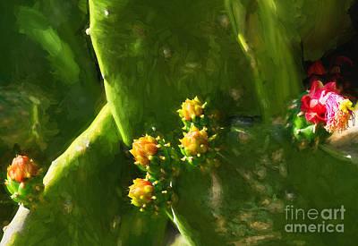 Photograph - Cactus Buds by Les Palenik