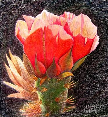 Cactus Cutie Art Print by Marilyn Smith