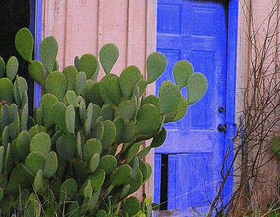 Photograph - Cactus Door by Walter E Koopmann