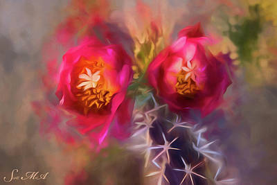 Photograph - Cactus Flower 07-003 by Scott McAllister