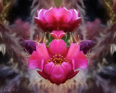 Photograph - Cactus Flower 07-02 S08 by Scott McAllister