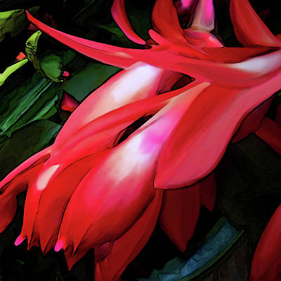 Digital Art - Cactus Flower by Gina Harrison