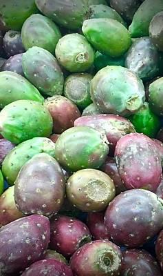 Photograph - Cactus Fruit by Mario Perron