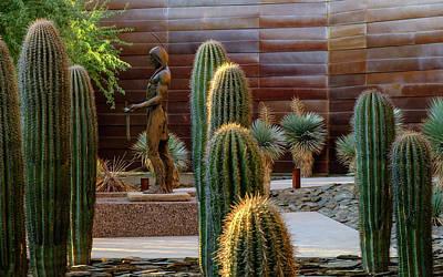 Photograph - Cactus Garden by Glenn DiPaola