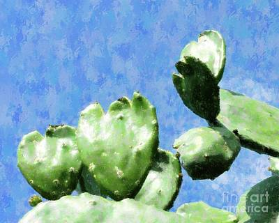 Photograph - Cactus Hearts by Barbie Corbett-Newmin