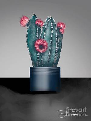 Digital Art - Cactus In Bloom I  by J Kinion