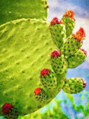 Digital Art - Cactus In Bloom by Sandra Selle Rodriguez