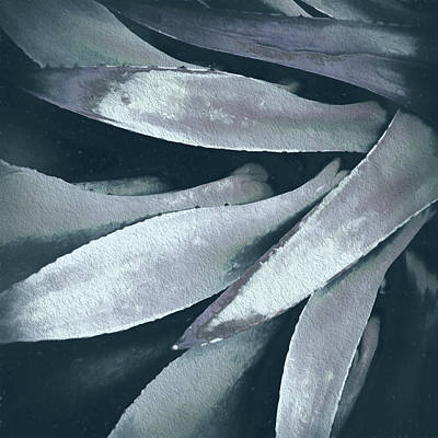 Art Print featuring the photograph Cactus In Blue And Grey 2 by Julie Palencia