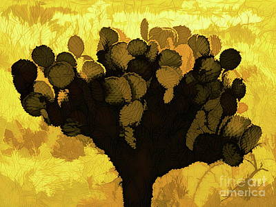 Digital Art - Cactus In The Sun by Tim Richards