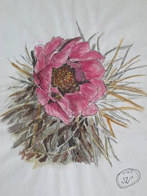 Painting - Cactus Joy by Sharyn Winters