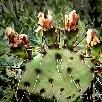 Digital Art - Cactus - Nature Art by Ann Powell