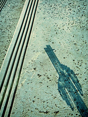 Photograph - Cactus Shadow Abstract by Tony Grider
