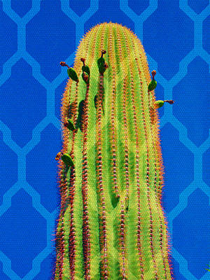 Mixed Media - Cactus Weave by Michelle Dallocchio